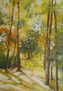 Mpanga Forest [sold]